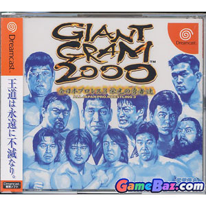 DC Giant Gram 2000 - All Japan Pro Wrestling 3